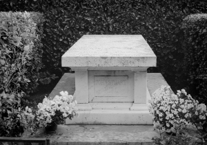 jsm best grave